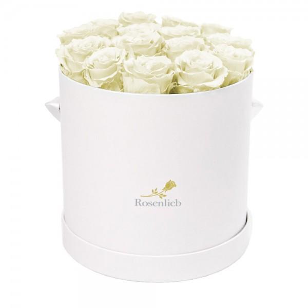 Medi Bellissima - 18 Infinity Roses
