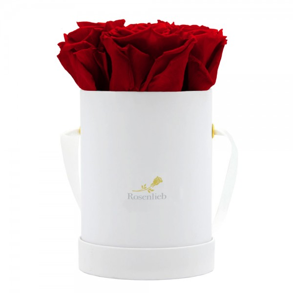 Pico Bellissima - 4 Infinity Roses