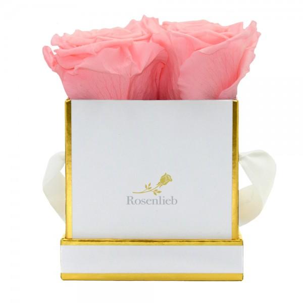 Square Bene - 6 Infinity Roses